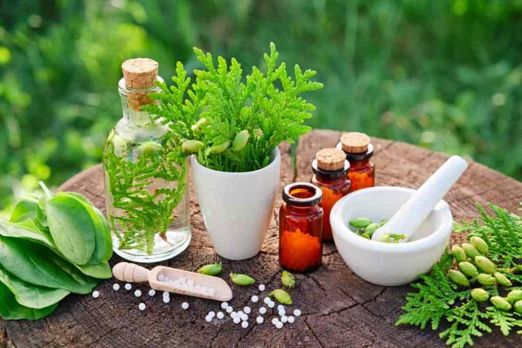 A-Look-at-the-Principles-of-Holistic-Medicine