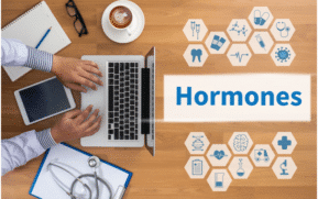bioidentical hormones vs synthetic